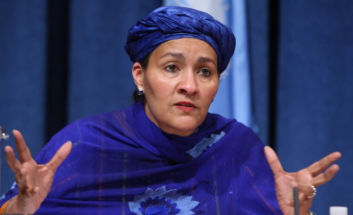 Amina Mohammed, Minister of Environment