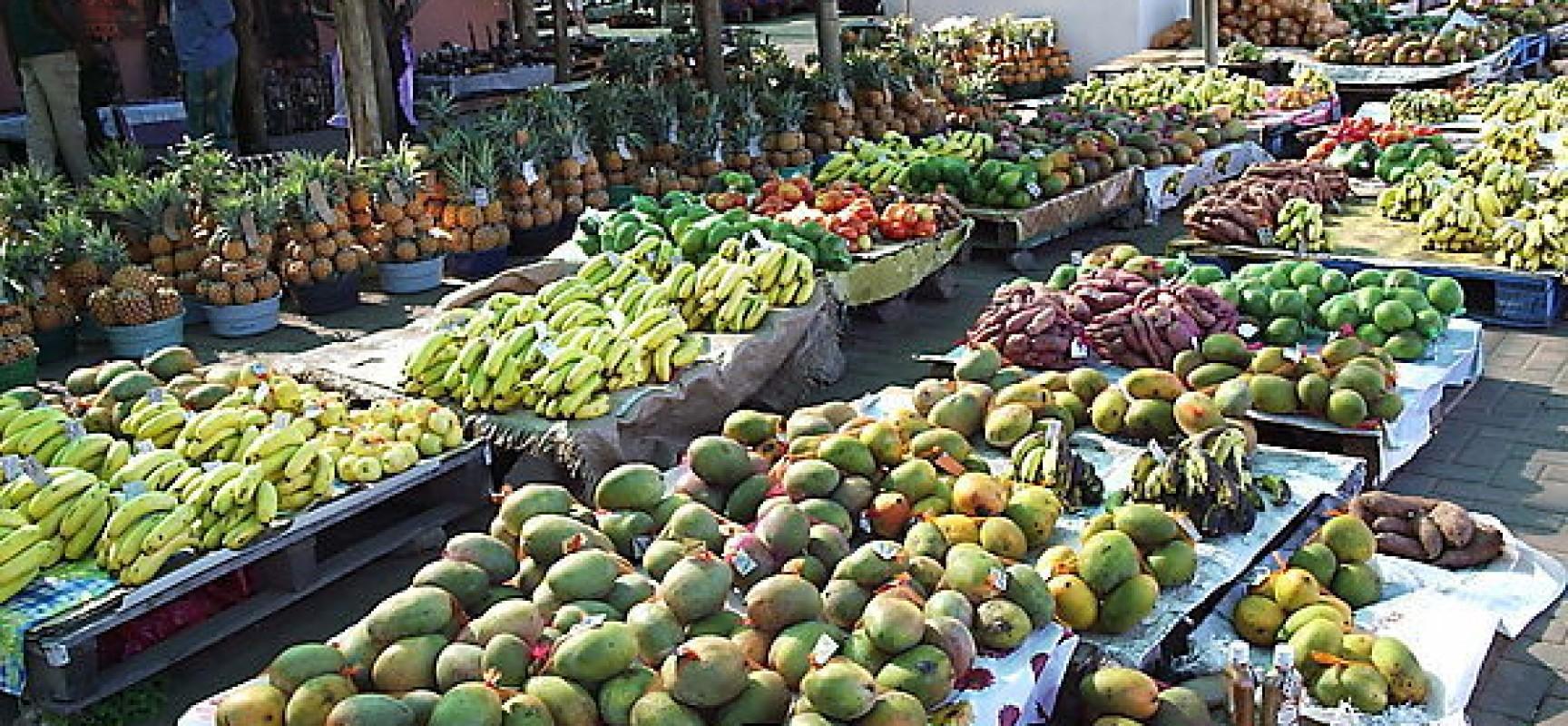 Nigeria may experience food shortage –UNDP reveals