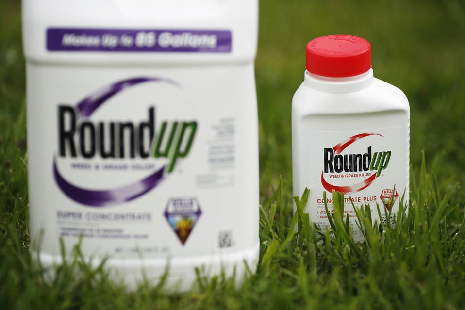 Glyphosate, the widely used weed killer Monsanto markets under the Roundup brand. Photo: Bloomberg News