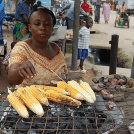 Raging GMO debate in Nigeria: At Last, Science Shall Prevail