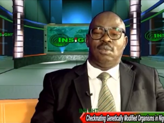Video: Checkmating Genetically Modified Organisms in Nigeria
