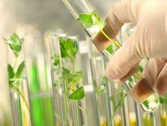 The Fuss about biotechnology: Why?